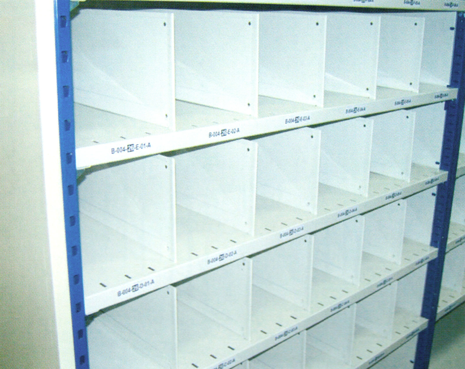 Enclose type, side & back LRS with Shelf Divider at each level